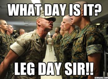 CrossFit is full of leg-work